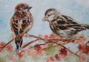 Vrabečci cvrlikají